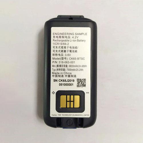 318-063-001バッテリー交換